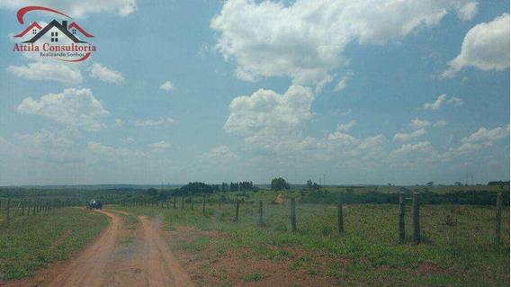 Fazenda, Área Rural De Campo Grande, Campo Grande - R$ 35 Mi, Cod: 360 - V360