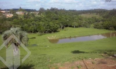 Chacara - Lomba Do Pinheiro - Ref: 145856 - V-145856