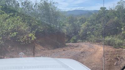 Venta De Finca En Veraguas