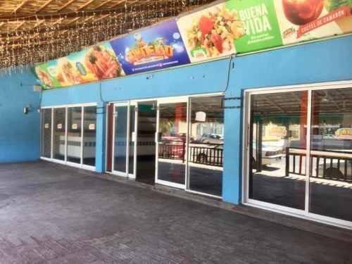 Local Comercial En Renta Campestre La Rosita