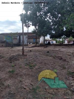 Fazenda Para Venda Em Rio Largo, Zona Rural - Fz-10