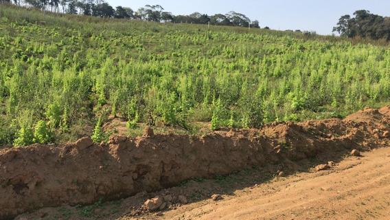 Terrenos Direto C/ A Incorporadora Corretores De Plantão Aj