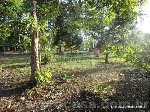 Chácara Com 4 Dormitórios À Venda, 5000 M² Por R$ 300.000,00 - Tarumã-açu - Manaus/am - Ch0021