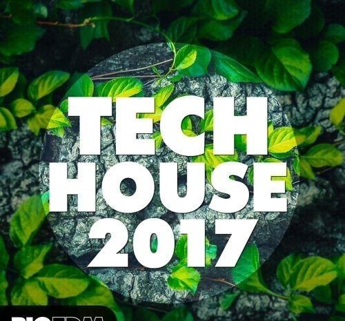 Big Edm - Tech House 2017 (wav, Midi, Serum)