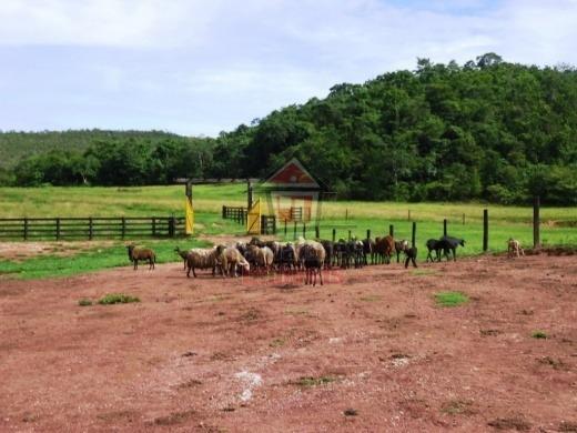 Fazenda Rural À Venda Planalto Da Serra - Mt - Fa0120
