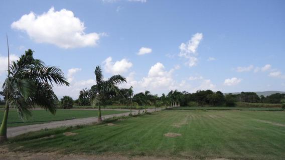 Finca Hacienda En Venta En Yaracuy #21-5547