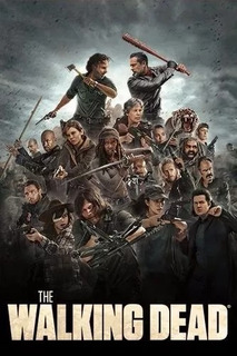 The Walking Dead - Temporada 9 Parte 1 Y 2 - Vealo On Line