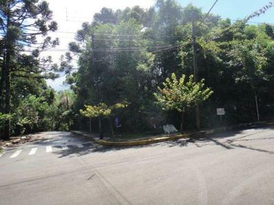 Terreno - Bairro Centro - Te03549