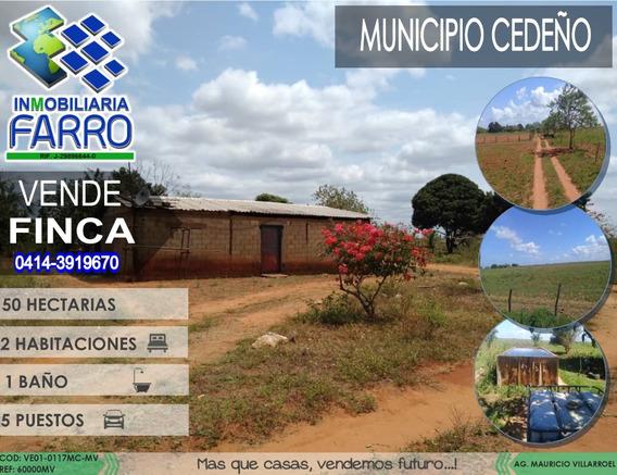 Venta De Finca En El Municipio Cedeño Ve01-0117mc-mv