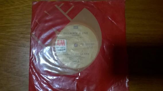 Gallagher & Lyle - Disco Simple - Mañana De Campo/layna