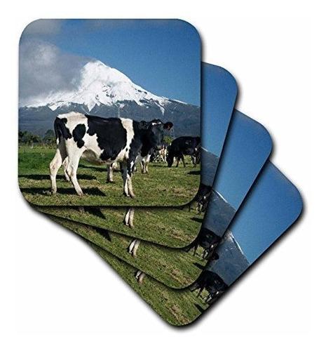 3drose Cst_71761_2 Vacas Lecheras Animales De Granja Taranak