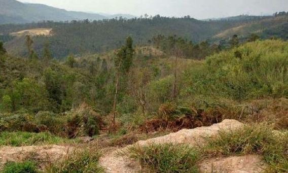 (ld)terreno Em Mairiporã- Terra Preta Condômino Particular