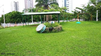 Terreno Para Venda Em Salvador, Patamares - Lr0591