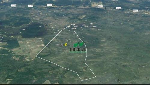 Fazenda À Venda, 88660000 M² Por R$ 24.000.000,00 - Zona Rural - Santa Rita De Cássia/ba - Fa0049