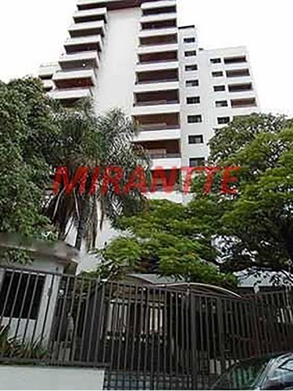 Apartamento Em Água Fria - São Paulo, Sp - 132806