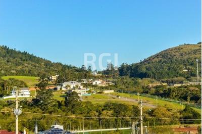 Terreno Em Vila Nova - Lp948