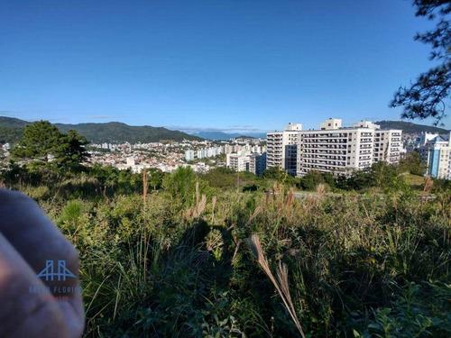 Imagem 1 de 19 de Terreno À Venda, 450 M² Por R$ 787.000,00 - Itacorubi - Florianópolis/sc - Te0280