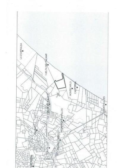 175 Hectã¡reas | Campo | Rocha