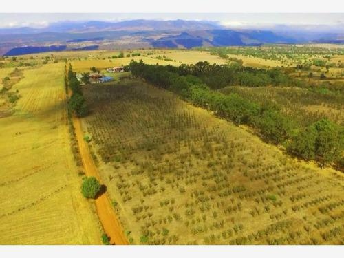 Imagen 1 de 6 de Terreno En Venta Terrenos Huasca Servicios 24 Msi No Ejido