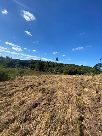 36d-terreno Em Área Rural E 12mil De Entrada