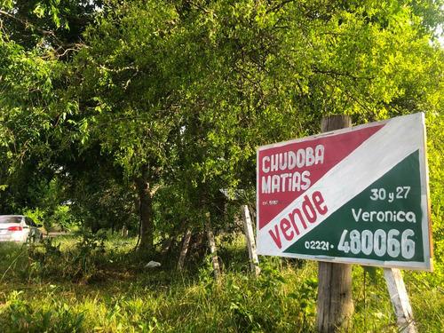 Imagen 1 de 5 de Lote Punta Del Indio T-734 - Punta Indio