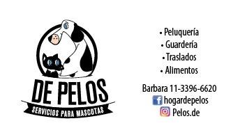 Peluqueria Canina, Guarderia Y Traslados