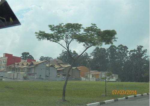 Imagem 1 de 4 de Terreno À Venda - Parque São Vicente - Mauá - Sp - 27734