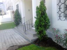 Jardinero Decorador Particular En Miraflores - San Isidro