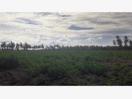Terreno En Venta Isla De La Piedra Terreno Para Desarollo