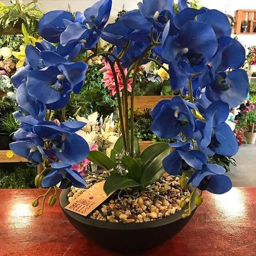Decoração De Interiores Com Orquídeas!