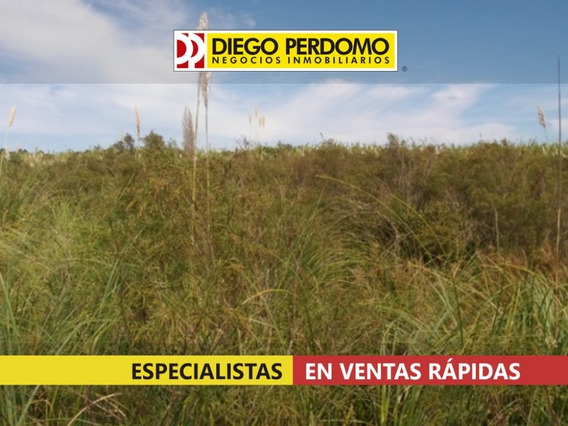 Chacra 3.9 Ha En Venta, Montevideo.