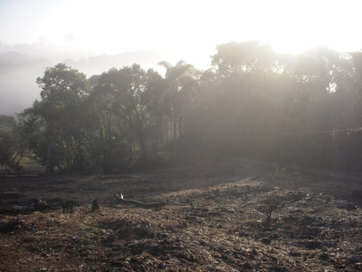 Lindo Terreno No Residencial Ville Saint James - Natureza