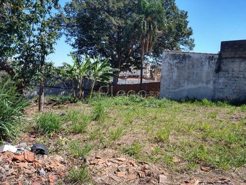 Terreno Para Aluguel Em Vila Marieta - Te025146
