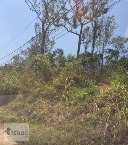 Imagem 1 de 15 de Terreno 7350 M² - Venda - Represa - Ribeirão Pires/sp - Te0055