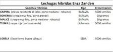 Semillas Hibridas. Hidroponia