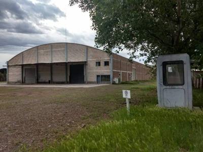 Galpones, Depósitos O Edificios Ind. Alquiler Allen