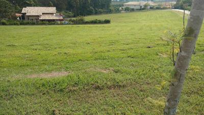 Terreno Residencial À Venda, Condomínio Vale Do Lago, Sorocaba - Te3789. - Te3789