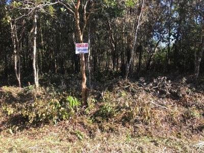 Terreno De Chácara Sem Construção, Em Itanhaém, Litoral Sul