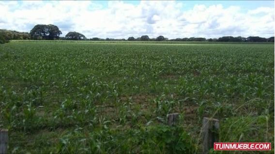 Haciendas - Fincas En Venta Iris Hernandez