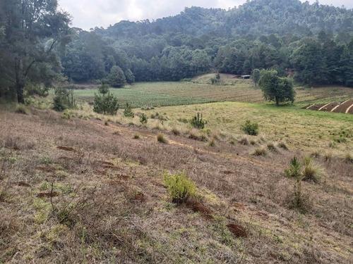 Terreno Boscoso Para Rancho