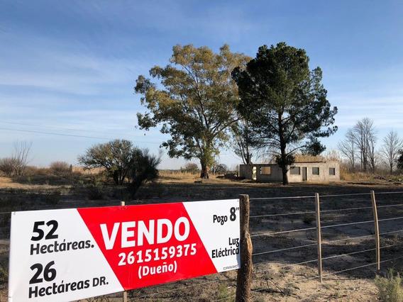 Campo - Finca - 52hs Mendoza - Santa Rosa - La Dormida