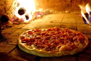Faça Você Mesmo Forno De Pizzaria - Envio Por E-mail Grátis