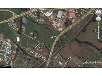 Parcela 8 C, Colonia Prosperidad, Lotes 1, 2 Y 3, Colindantes Con Ruta 5 Sur
