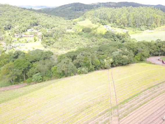 L. Terrenos, Ibiúna, Perto Das Cachoeiras E Do Centro