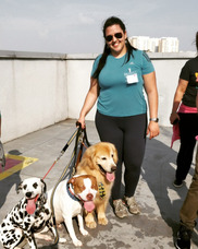 Passeadora De Cães - Dog Walker
