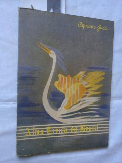 Poesia Para O Piaui Maranhão... Alma Lirica Do Brasil