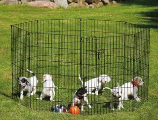 Corral Para Perro 60cm De Alto 6 Paneles
