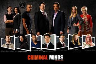 Serie Criminal Minds As 13 Temporadas Completas Frete Grátis
