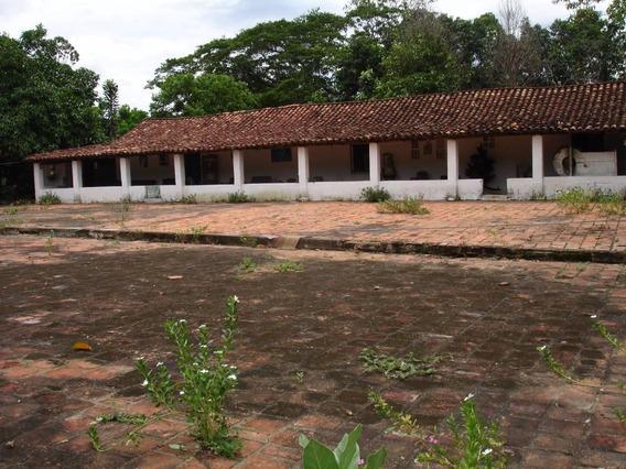 Venta Finca Canoabo Bejuma Edo Carabobo