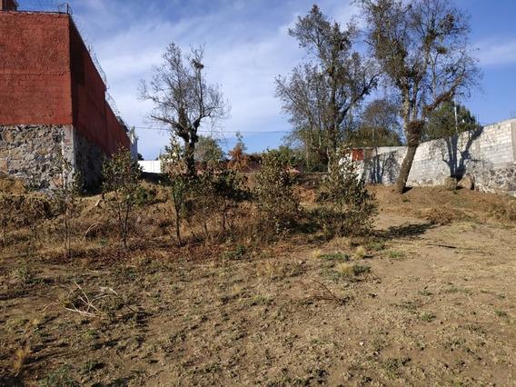 Terreno Colonia Zacapexco